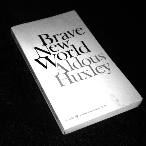 "community identity and stability in brave new world by aldous huxley World :ignorance and failure to recognize the purpose of the interests of the ""community , identity , stability "" the world huxley's brave new world."