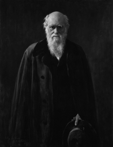In 1881 Darwin was an eminent figure, still working on his contributions to evolutionary thought that had an enormous effect on many fields of science. Portrait by John Collier. Source: Wikipedia. Click to enlarge.